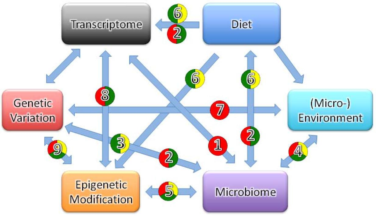 genes and environment Everyone is different but what makes a person unique in this lesson, we'll examine the way genes and the environment affect who a person is.